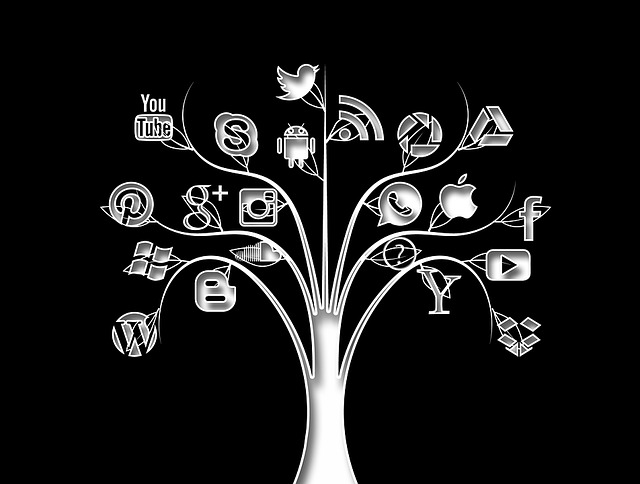 "graphic of a social media ""tree"""