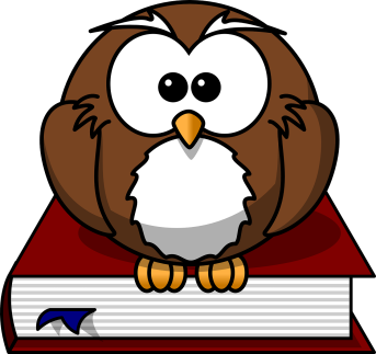 drawing of owl sitting on book